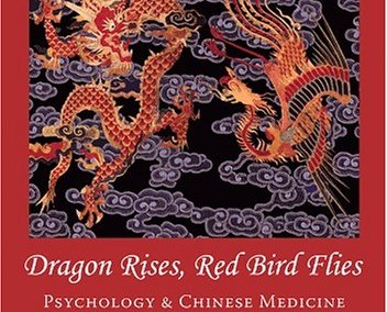 Hammer, Leon. Dragon Rises, Red Bird Flies: Psychology and Chinese Medicine